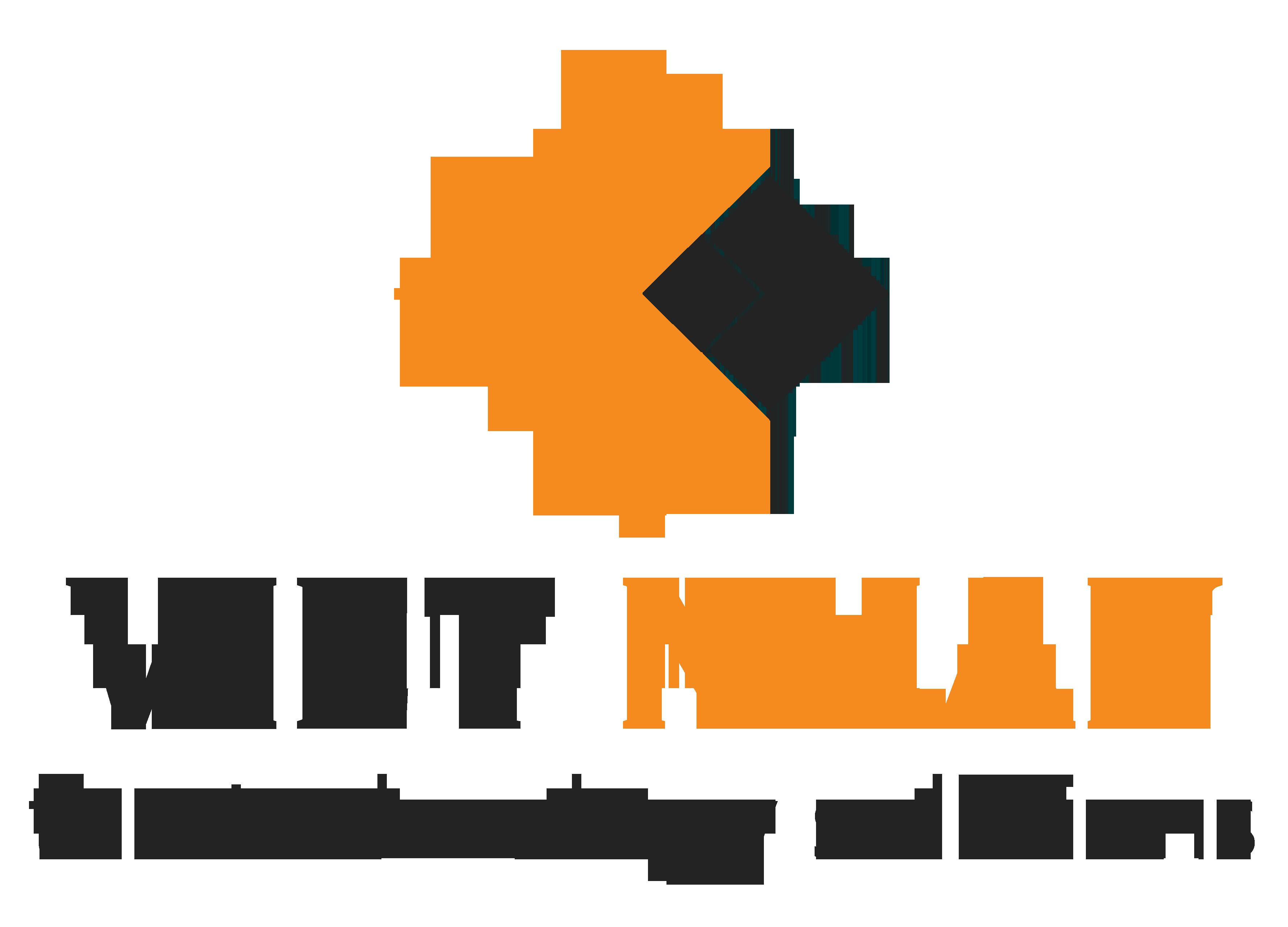 logo vietnhan